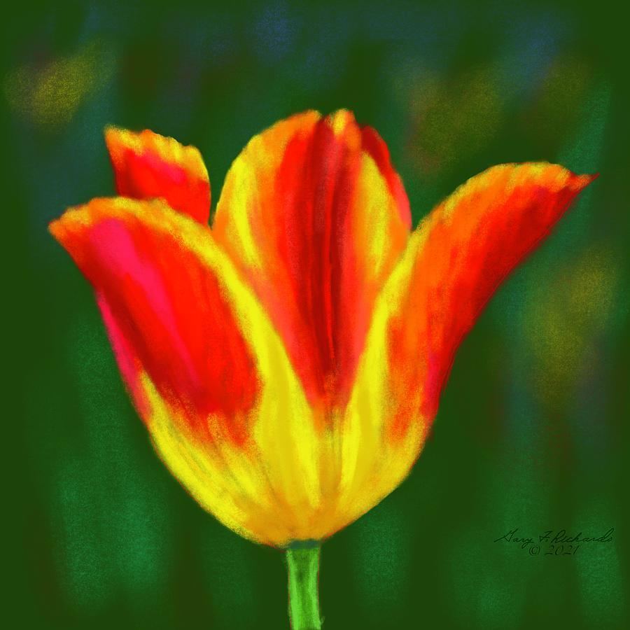 Flaming Tulip Drawing