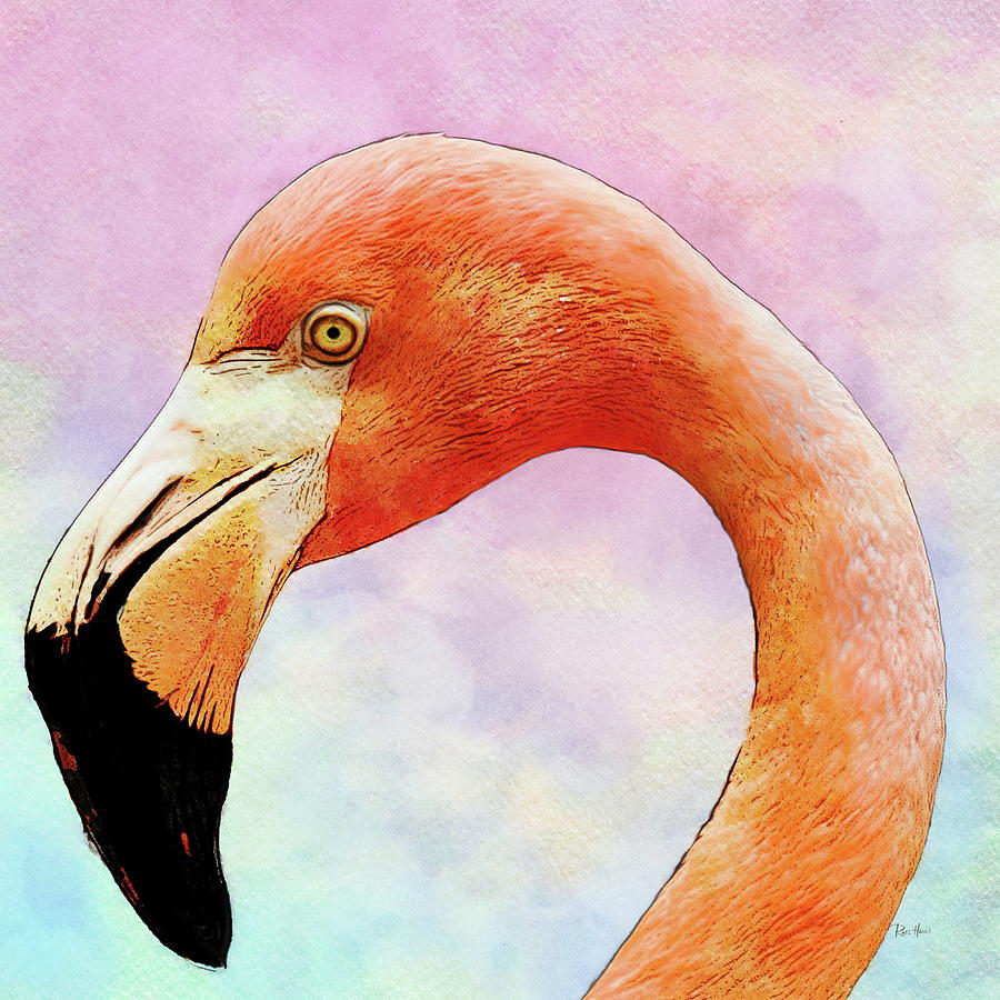 Flamingo - The Upside Down Bill Painting