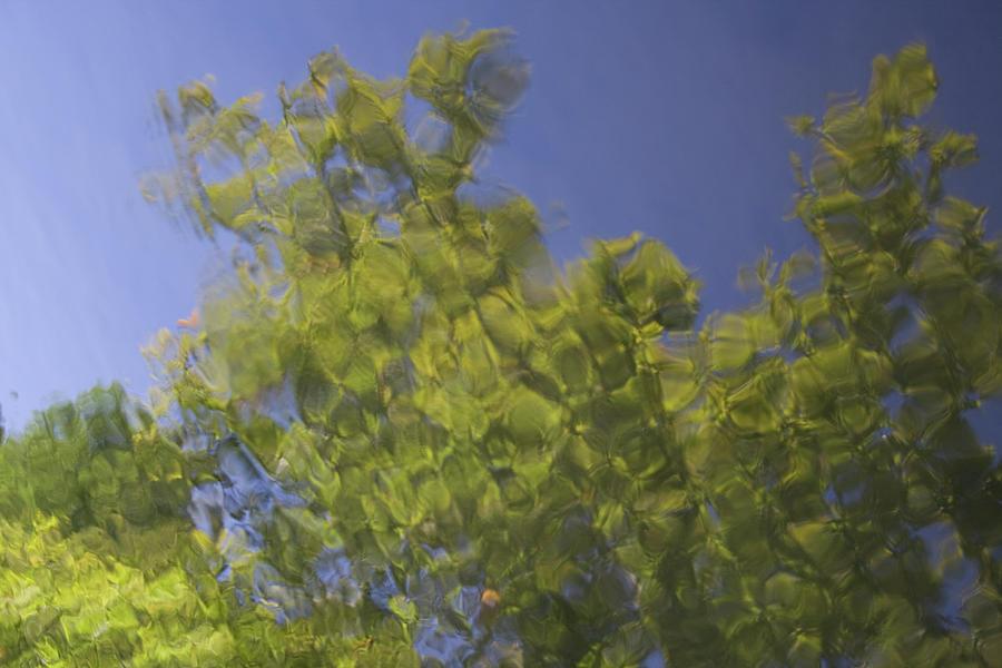 Flint Green Impression by Dylan Punke