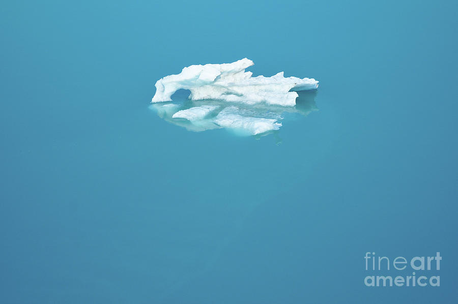 Floating Ice Photograph