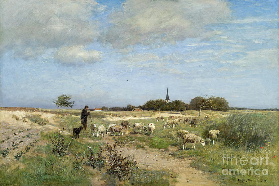 Flock of Sheep in Normandy by Eugen Jettel