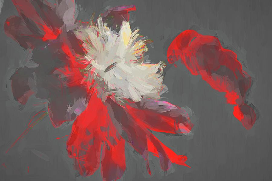 Floral Red Abstracted by Alice Gipson