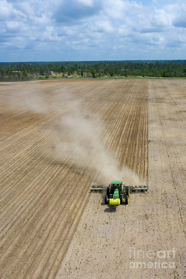 Florida Farmer Photograph