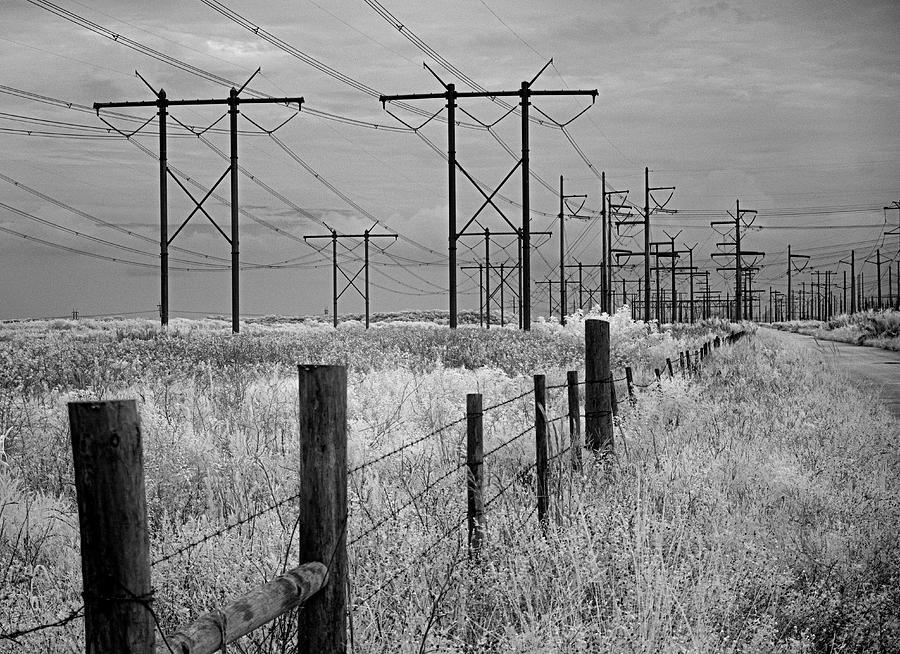 Florida Power Lines Ir 0600 Photograph