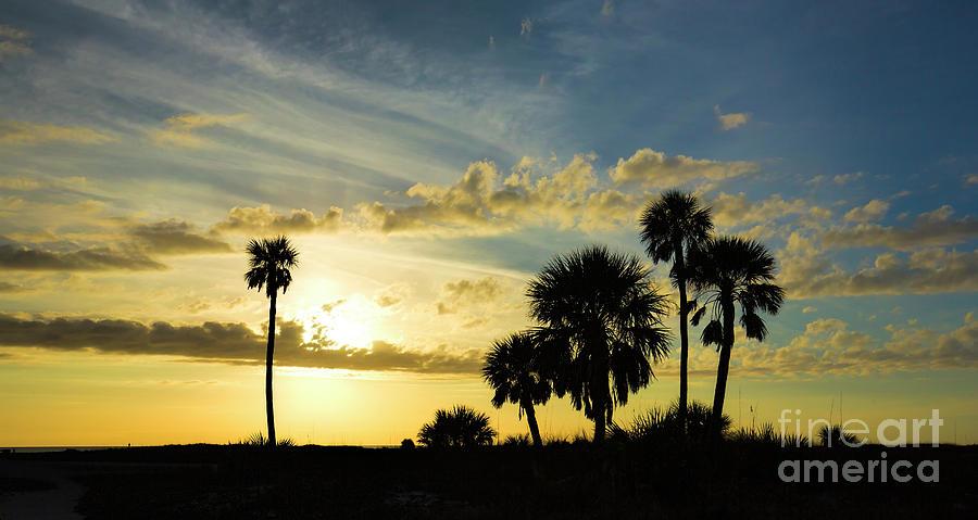 Florida Sunset 2 by Felix Lai