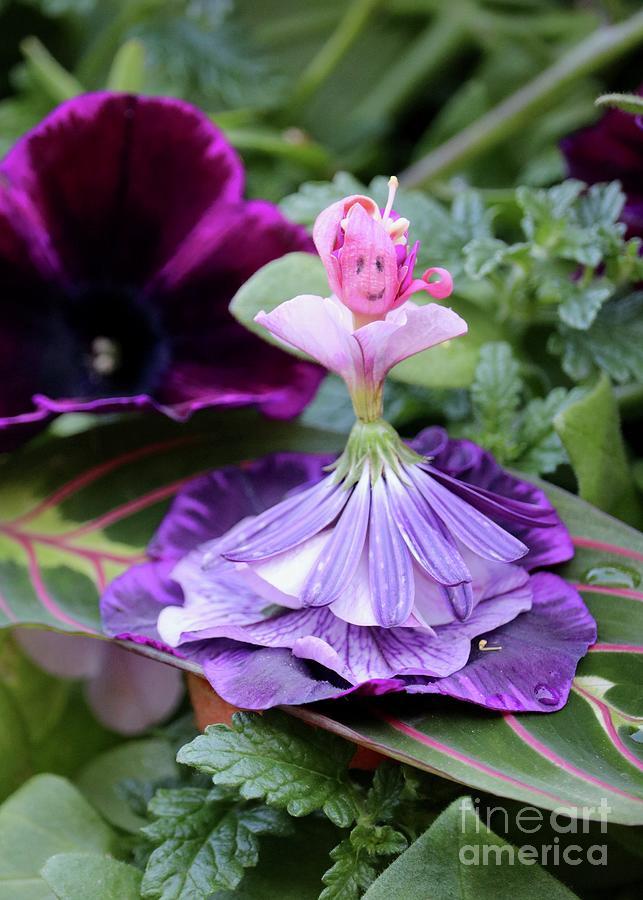 Flower Dolls - Patricia Petunia Photograph