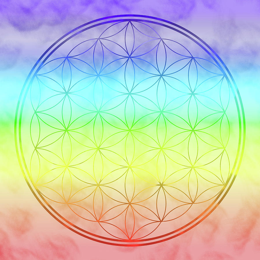 Flower of Life 1 by Angie Tirado