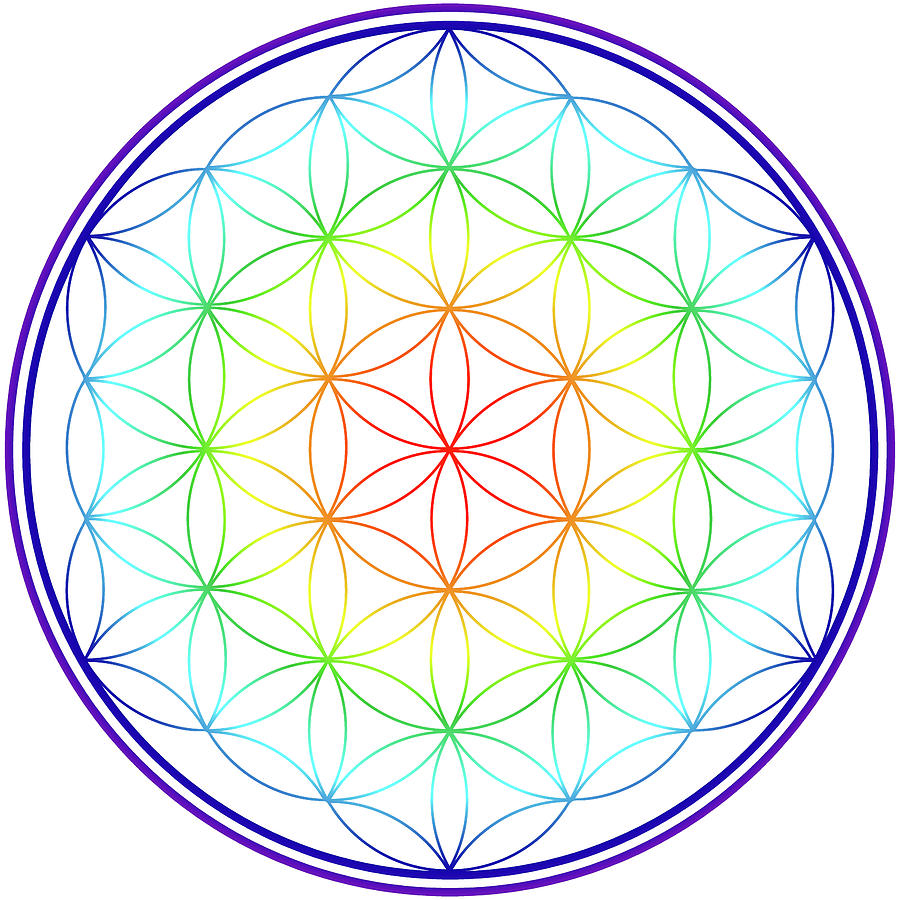 Flower of Life by Angie Tirado
