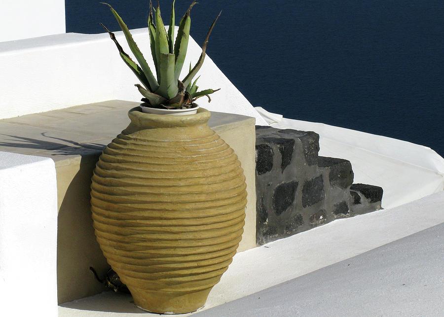 Flower Pot In Santorini Photograph