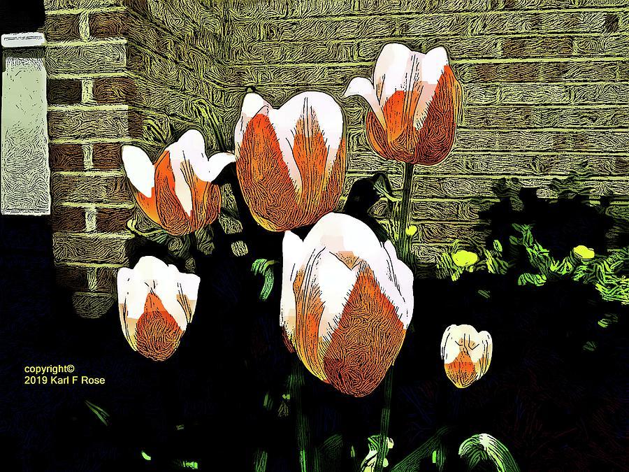 Flowers as art by Karl Rose