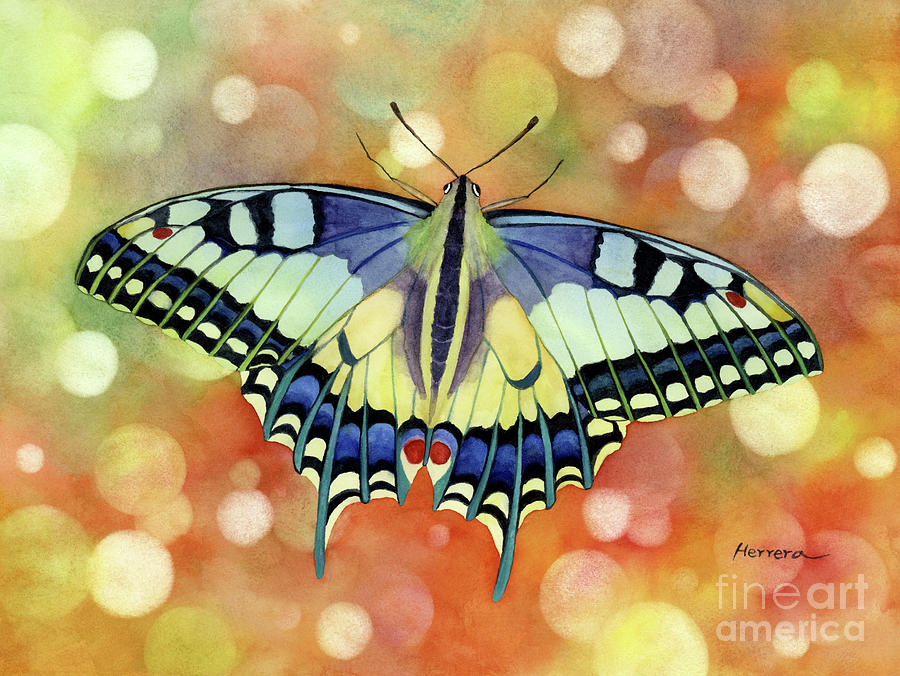 Butterfly Painting - Flutter Away by Hailey E Herrera