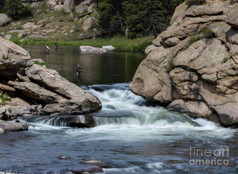 Fly Fishing The South Platte River In Eleven Mile Canyon Photograph