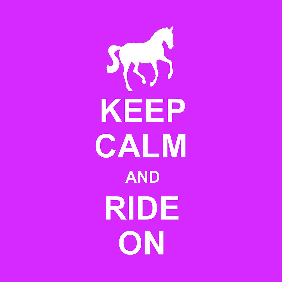 FLYING AND KEEP CALM SQUARED by Dressage Design
