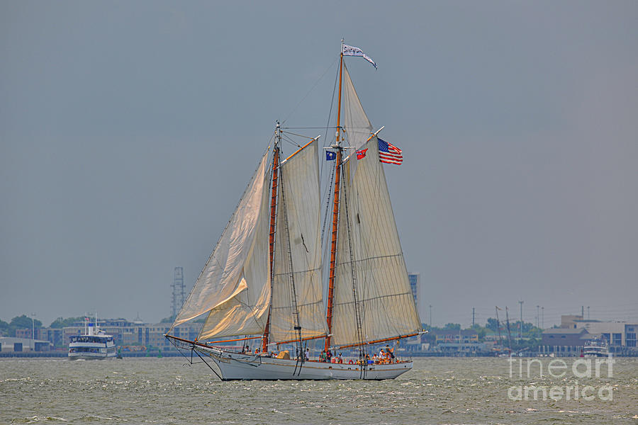 Flying Colors - Spirit of SC by Dale Powell