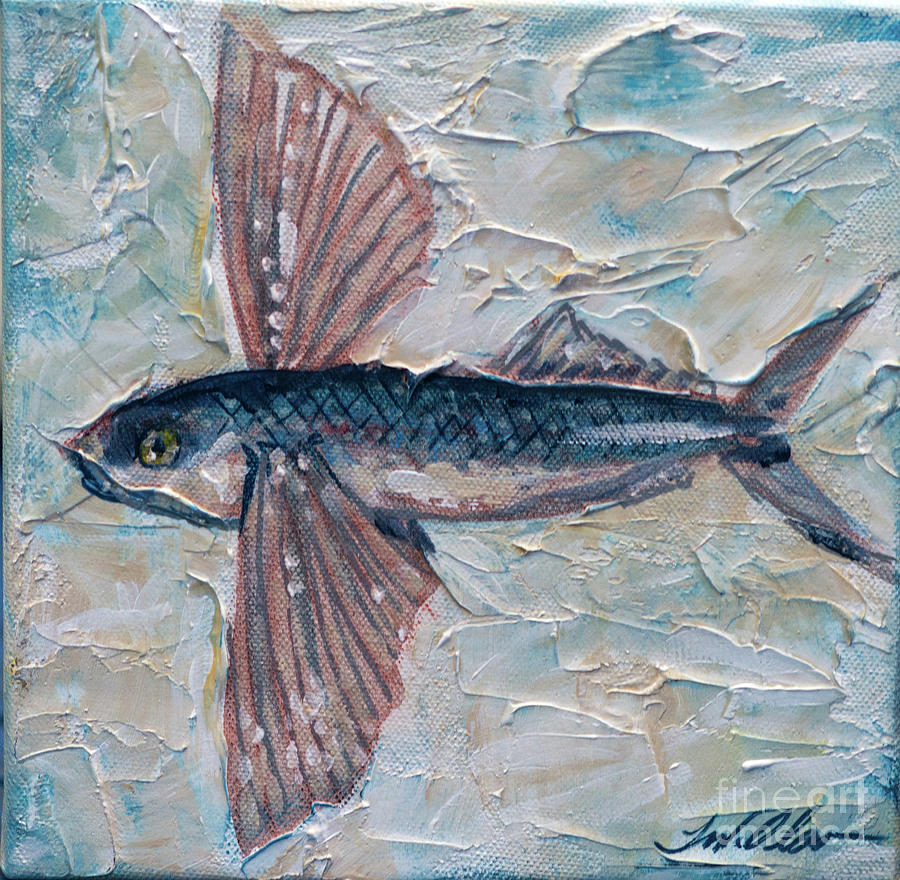 Flying Fish by Linda Olsen