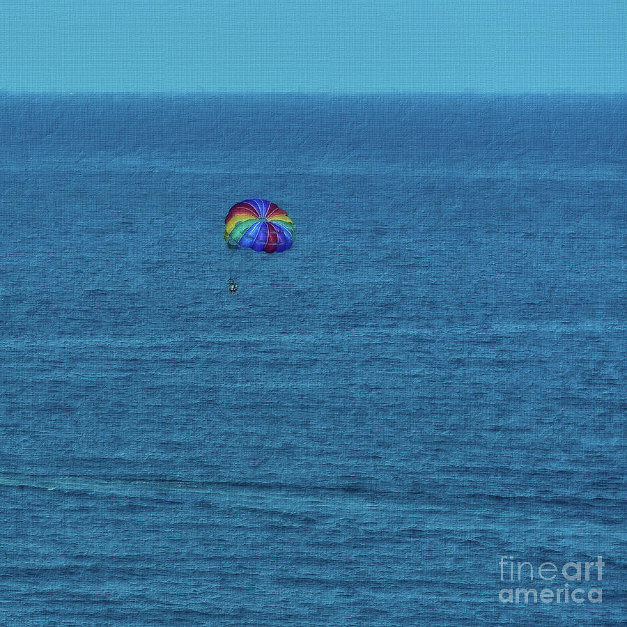 Sea Photograph - Flying Free  by Flo Photography