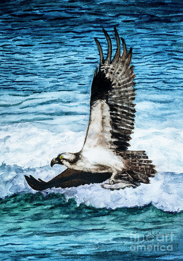Flying Home With Dinner - Watercolor Art by Sher Nasser
