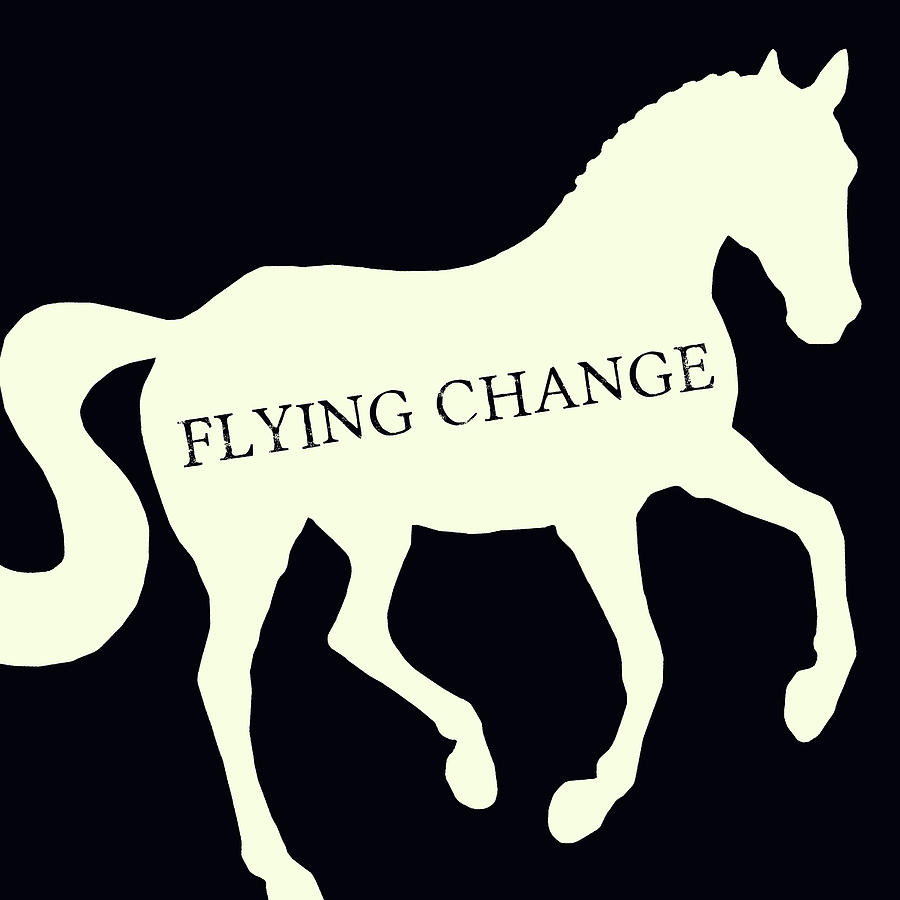 FLYING NEGATIVE SQUARED by Dressage Design