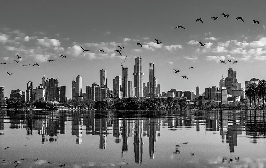 Melbourne Photograph - Flying over Melbournes  reflections  by Leigh Henningham