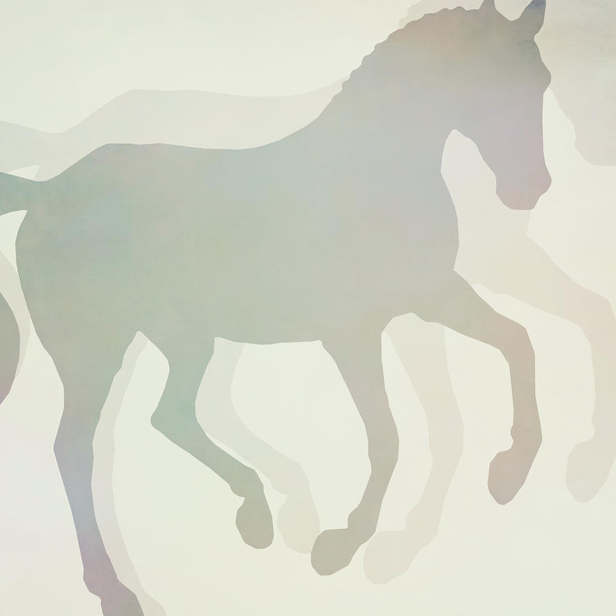 FLYING SHADOW SQUARED by Dressage Design
