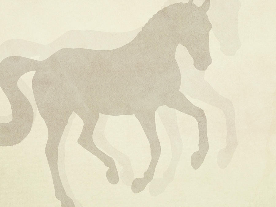 FLYING SILHOUETTE by Dressage Design