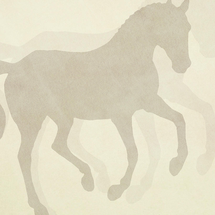 FLYING SILHOUETTE SQUARED by Dressage Design