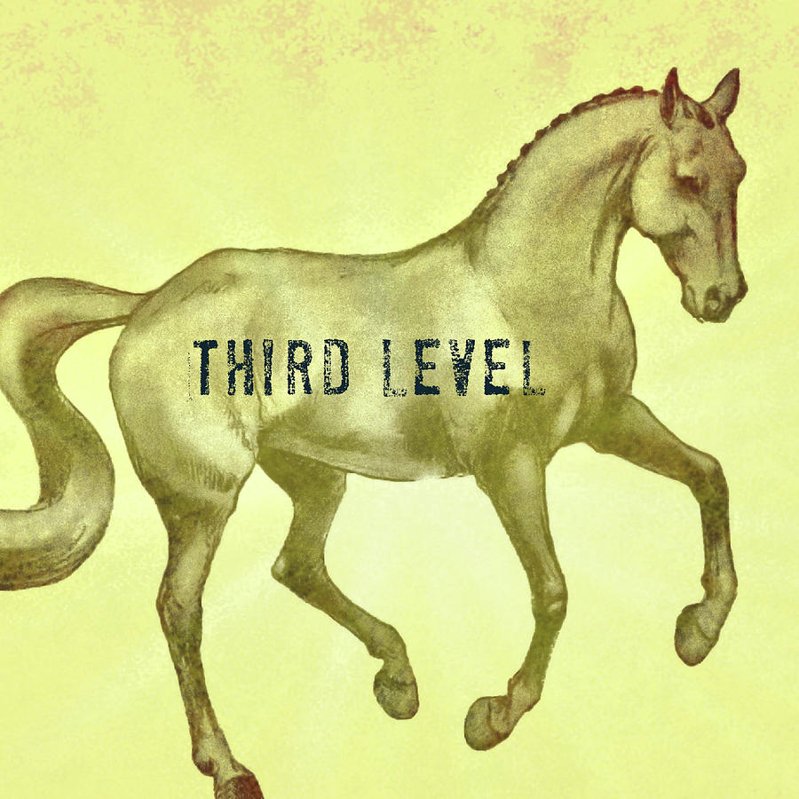FLYING THIRD LEVEL SQUARED by Dressage Design