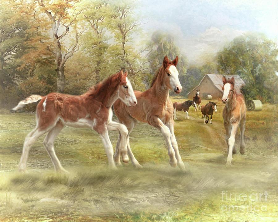 Foal Fun At Ford Farm Digital Art