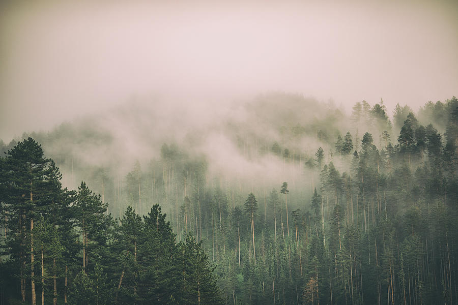 Fog and clouds on mountain Photograph by Miljko