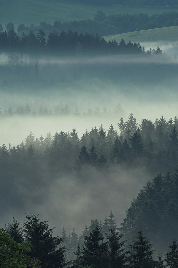 Fog In The Valley Photograph