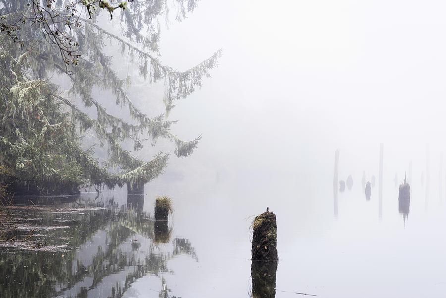 Fog on the Estuary by Robert Potts