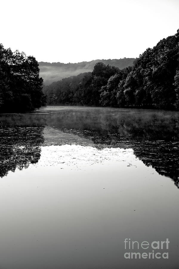 Fog Photograph - Fog On The Water by Phil Perkins