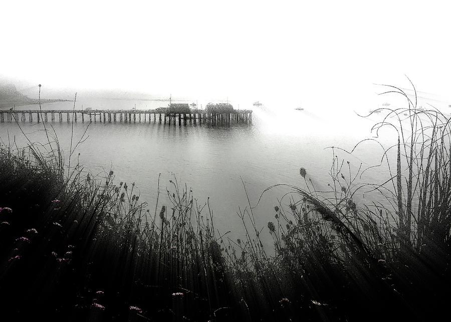 Fogged In 2 Photograph