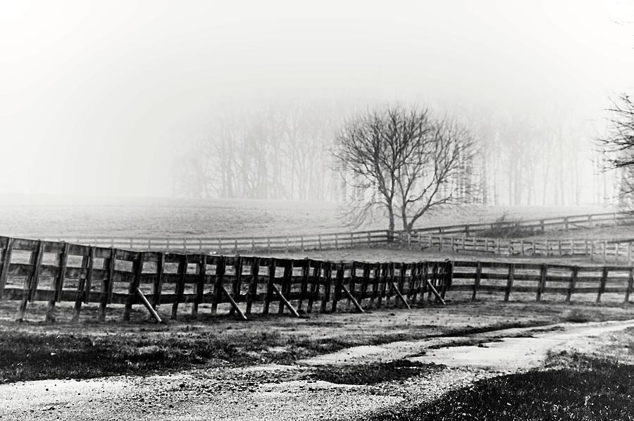 Foggy Morning In Chester County Monochrome Photograph