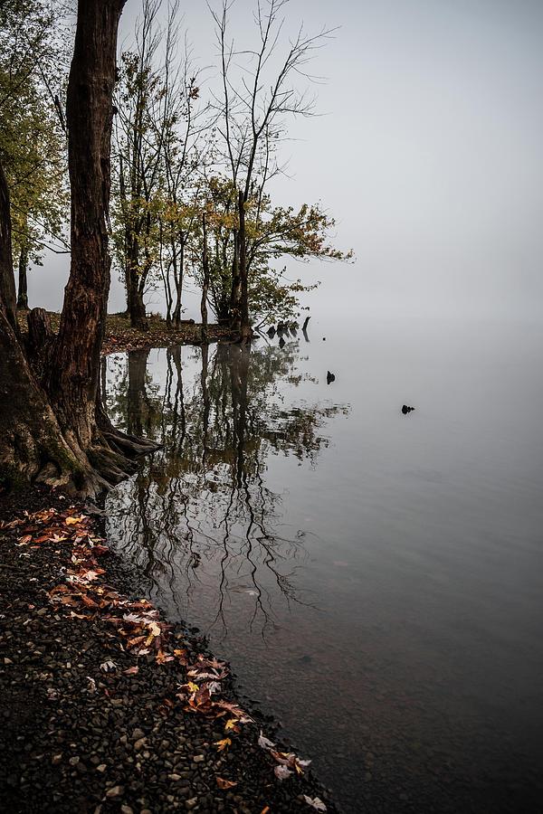 Foggy Shoreline Photograph
