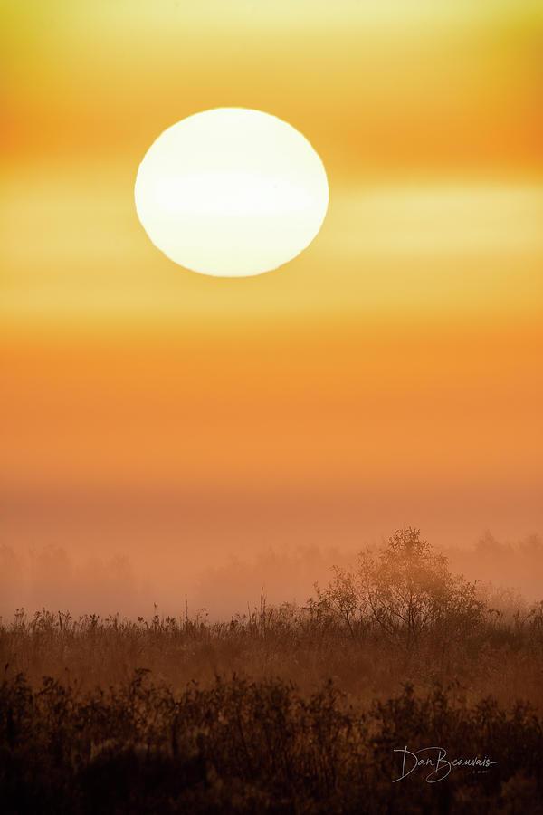 Foggy Sunrise 9564 Photograph