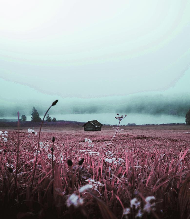 Foggy Weather - Surreal Art By Ahmet Asar Digital Art