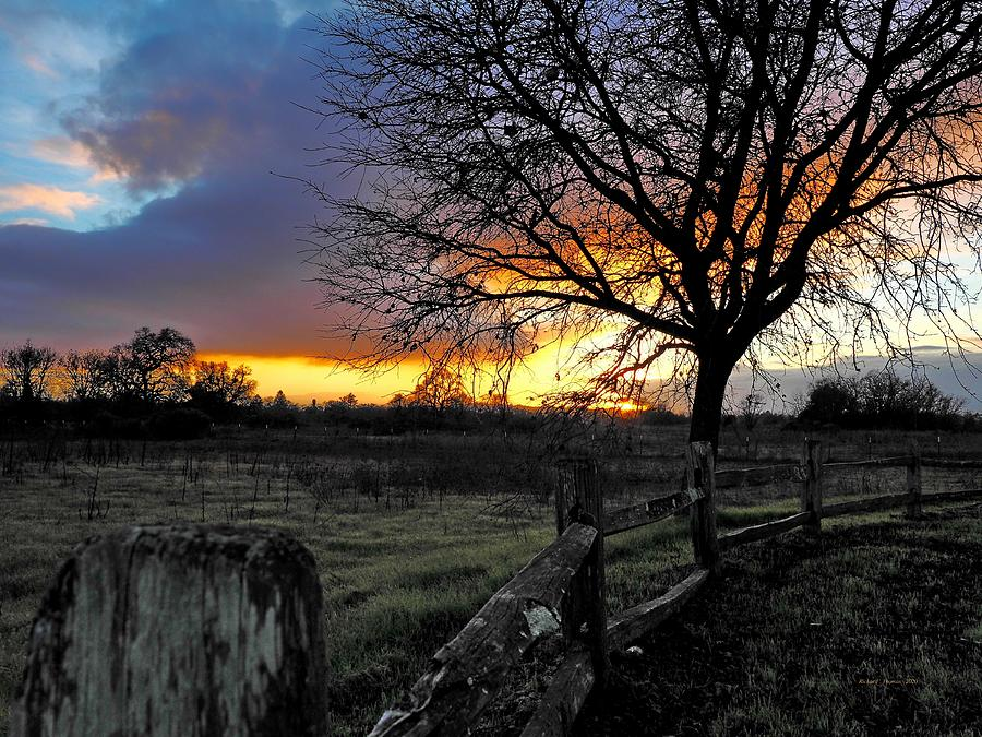 Forever Sunset by Richard Thomas