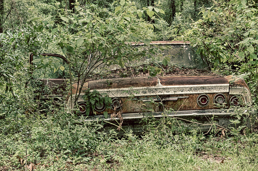 Forgotten Chevy by Travis Rogers