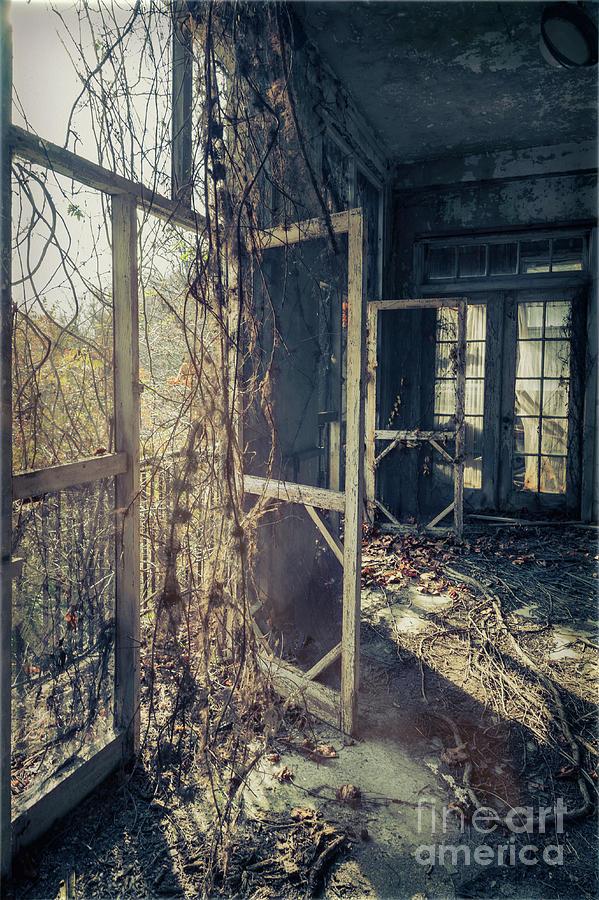 Forgotten Spaces by Debra Fedchin