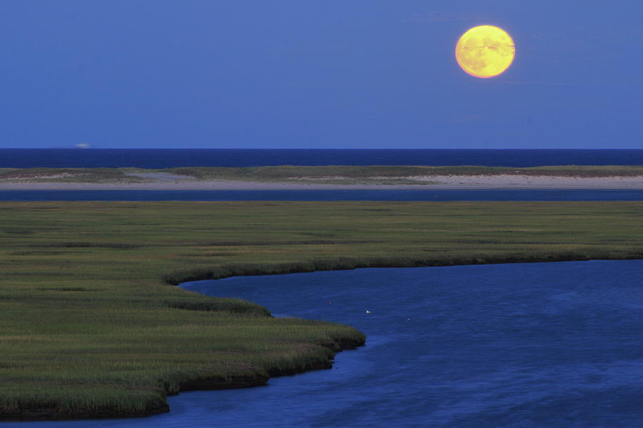 Fort Hill Moon Cape Cod National Seashore Photograph