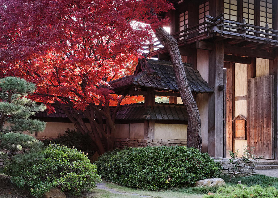 Fort Worth Japanese Garden Entrance by Rospotte Photography