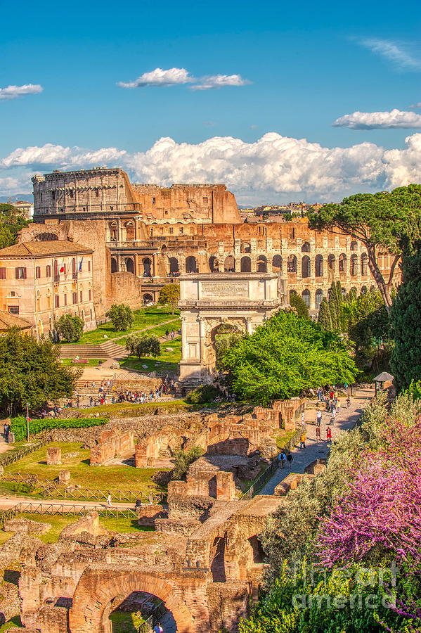 Italian Scene Photograph - Forum Romanum with The Colosseum in the background by Stefano Senise Wall Art of Italy