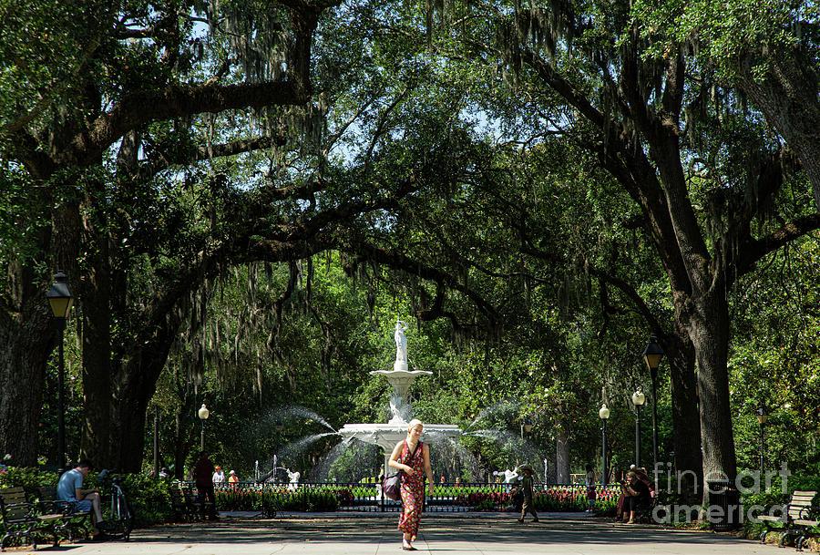 Fountain At Forsyth Park Savannah Georgia Photograph