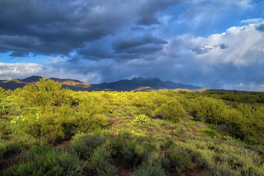 Four Peaks Rain Photograph