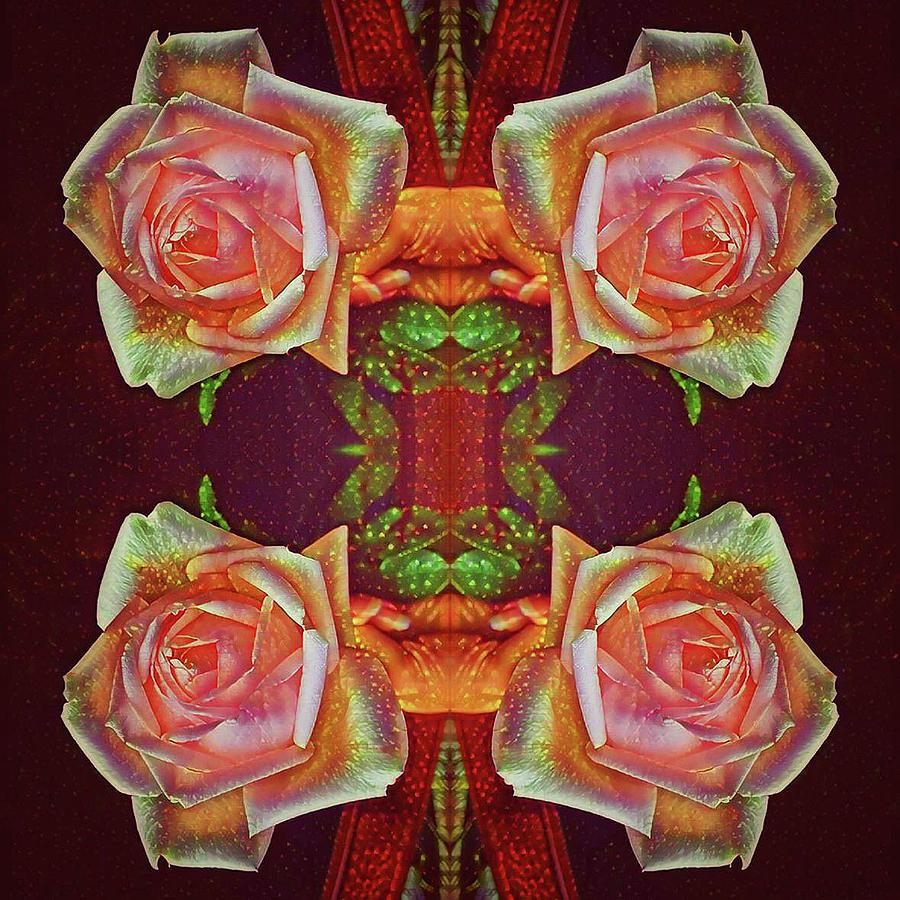 Four Roses by Sandy Gabriel