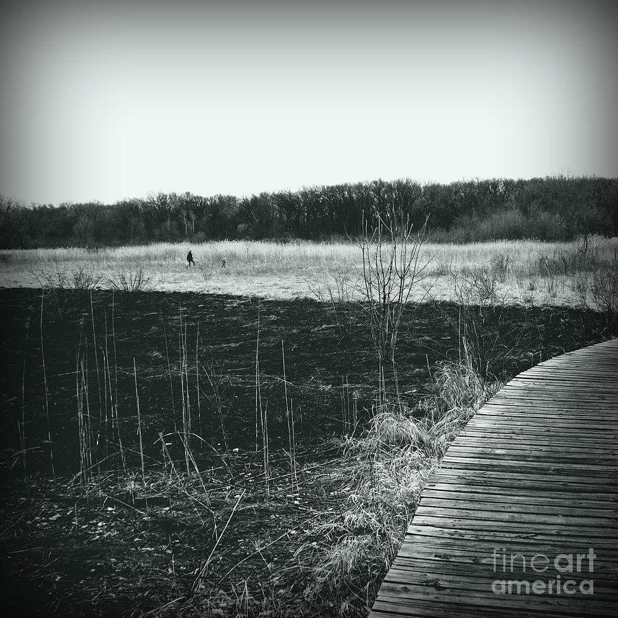 Freedom In The Wetlands Brush - Silver Square Photograph