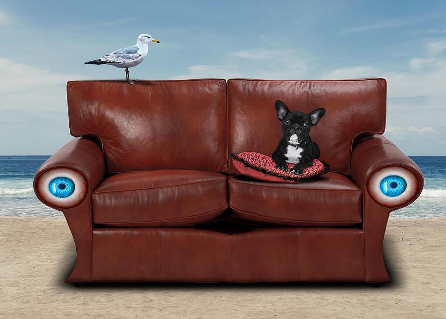 Bulldog Digital Art - French Bulldog Sitting in Sofa By the Beach Surreal by Barroa Artworks