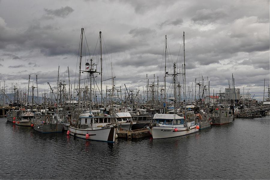 French Creek Marina 2021 Photograph