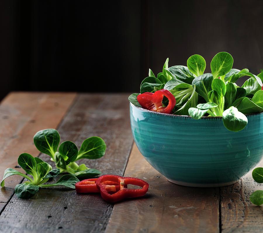 Fresh Corn Salad Photograph